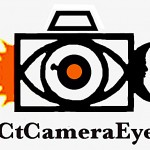 CtCameraEye Science Blog reaches 100 posts!