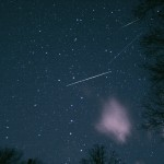 Leonids Make A Nice Local Appearence
