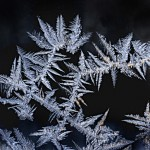 The beauty of ice crystals