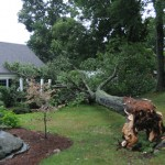 Microburst hits South Glastonbury